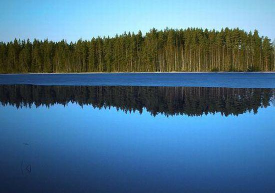Wildlife watching nella selvaggia taiga finlandese for Cabine per laghi